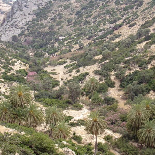 martsaliotiko-gorge-to-martsalo-beach-south-heraklion-crete