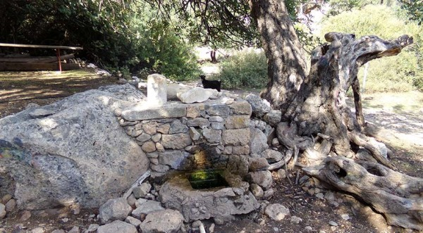 ancient-lissos-spring-chania-crete