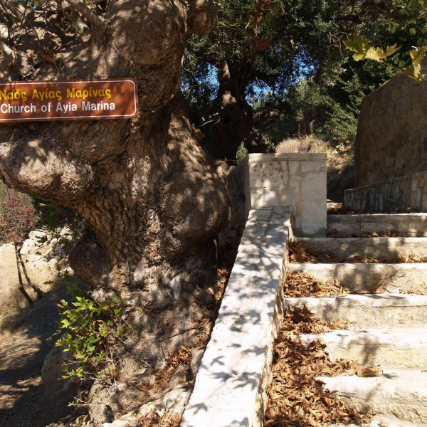 entrance-agia-marina-ayia-marina-church-huge-big-old-plane-tree-ravdoucha-kalidonia-north-west-of-chania-crete