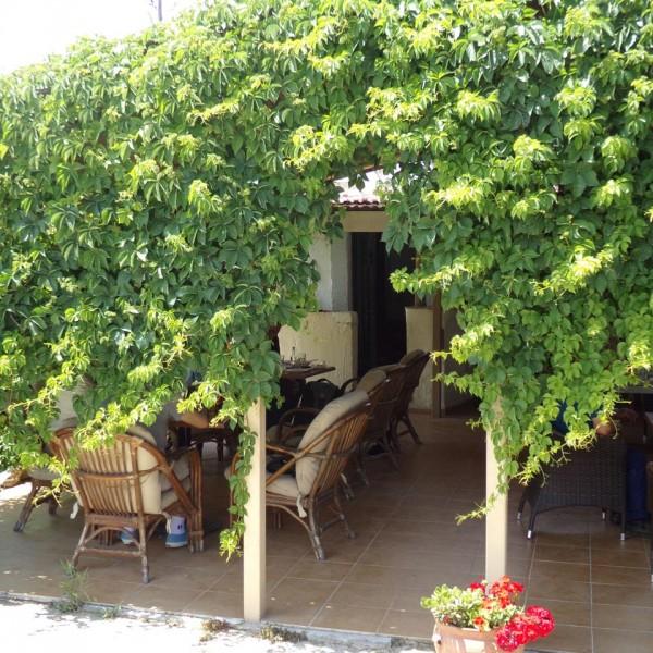 mylos-cafe-bar-agouseliana-rethymno-crete-2